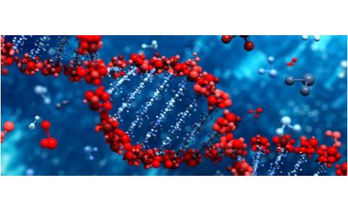 Nouvelles technologies génétiques
