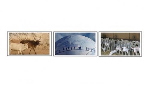 Webinaire sur «Les activités d'élevage dans l'œil du changement global».