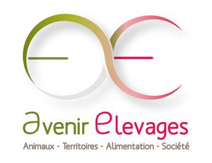 Logo AE-color-baseline