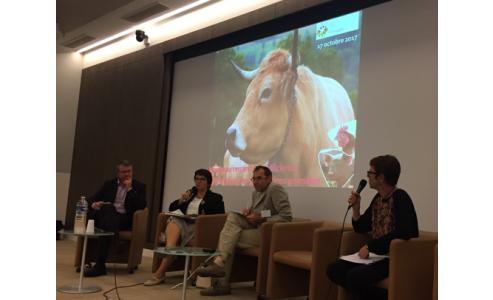 Nouveau regard sur l'Efficience alimentaire des productions animales