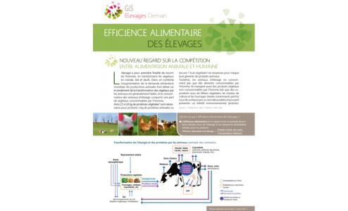 Rapport sur l'efficience alimentaire des élevages